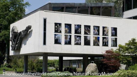 Geneva Natural History Musum