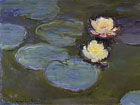 LACMA (Monet Waterlilly Collection)