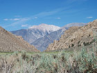 Boundary Peak, highest Mountain of Nevada