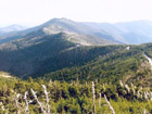 Mount Mitchell, highest Mountain of North Carolina