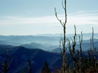 Clingmans Dome, highest Point of Tennessee