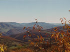 Spuce Knob, highest mountain of West Virginia